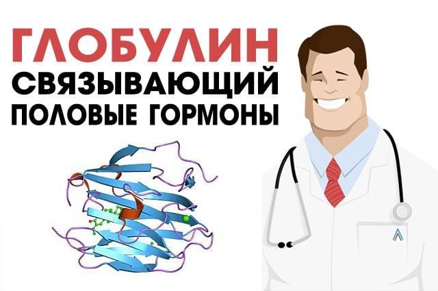 Globulin-svjazyvajushhij-polovye-gormony.jpg