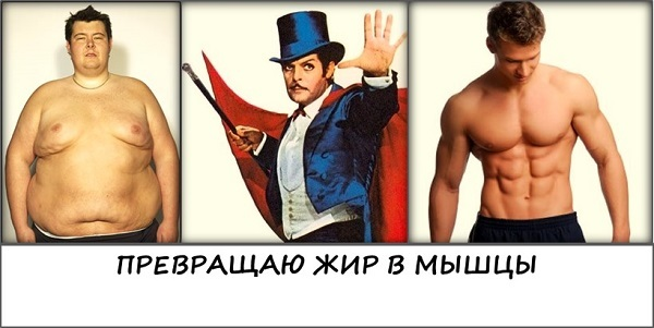 Превращаю-жир-в-мышцы.jpg